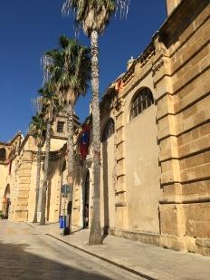 Palmbomen en cultuur is een goede combi toch?